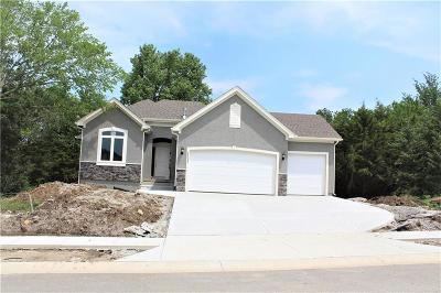 Lenexa Single Family Home For Sale: 24328 W 91st Terrace
