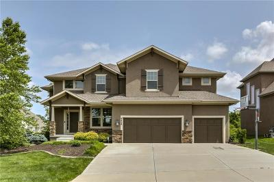 Overland Park Single Family Home For Sale: 9438 W 161st Terrace