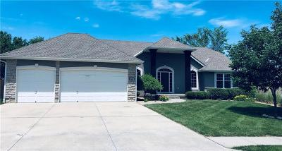Blue Springs Single Family Home For Sale: 1401 SE Woodbine Drive