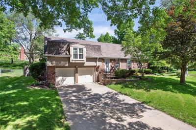 Shawnee Single Family Home For Sale: 5106 Ballentine Street