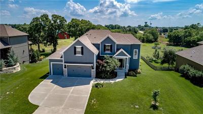 Lee's Summit Single Family Home For Sale: 4325 SE Lariat Drive
