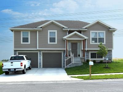 Belton Single Family Home For Sale: 708 Samantha Lane