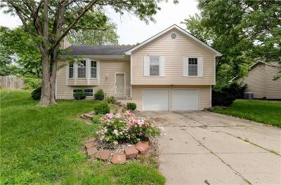 Kansas City Single Family Home For Sale: 10313 N Harrison Court