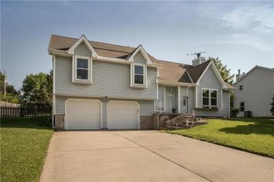 Lansing Single Family Home For Sale: 610 Meadowlark Road