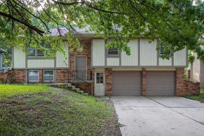 Belton Single Family Home For Sale: 314 Monroe Avenue