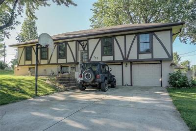 Cass County Single Family Home For Sale: 703 Falcon Drive