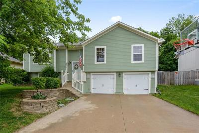 Blue Springs Single Family Home For Sale: 2601 NW Richard Drive