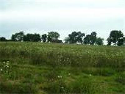 Residential Lots & Land For Sale: Lot 12 Prairie Hills