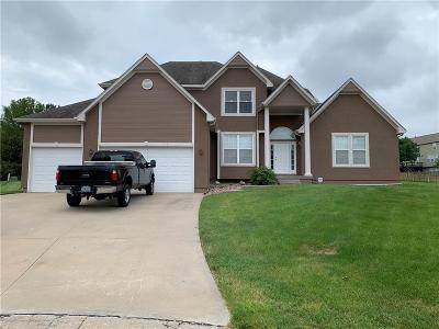 Lee's Summit MO Single Family Home For Sale: $334,900