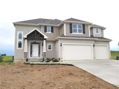 Platte City MO Single Family Home For Sale: $398,900