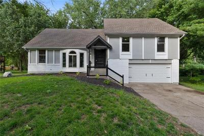 Kansas City Single Family Home For Sale: 7937 N Anita Drive