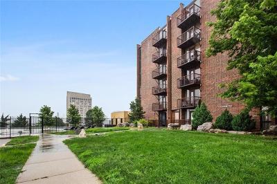 Kansas City Condo/Townhouse For Sale: 2933 Baltimore Avenue #202