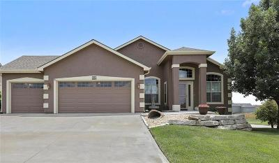 Eudora Single Family Home For Sale: 335 Stratton Drive