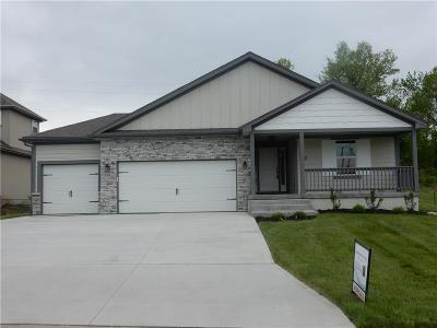 Blue Springs Single Family Home For Sale: 25309 E 30th Terrace