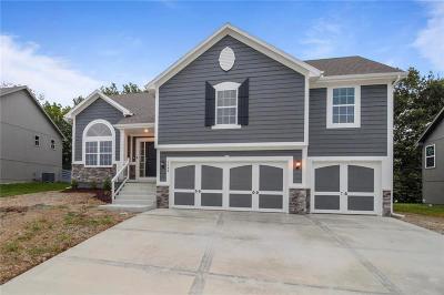 Kearney Single Family Home For Sale: 1106 E 14th Street
