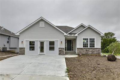 Raymore Single Family Home For Sale: 2016 Creek View Lane
