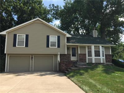 Lansing Single Family Home For Sale: 938 Stonecrest Drive