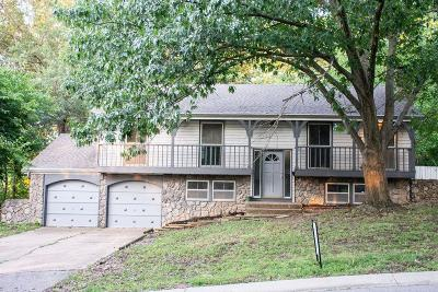 Cass County, Clay County, Platte County, Jackson County, Wyandotte County, Johnson-KS County, Leavenworth County Single Family Home For Sale: 12311 Askew Street