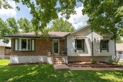 Blue Springs Single Family Home For Sale: 3113 SW Woods Chapel Court