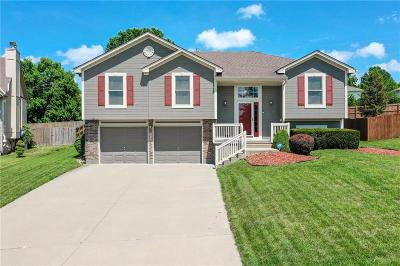 Raymore Single Family Home For Sale: 309 Shoreview Drive