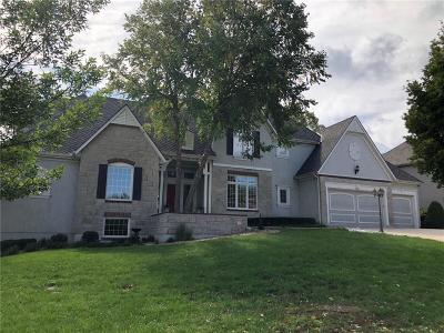Lenexa Single Family Home For Sale: 20025 W 93rd Street