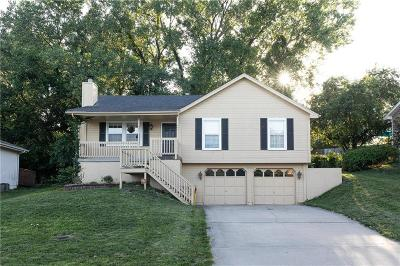 Jackson County Single Family Home For Sale: 1630 S Whitney Drive