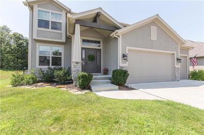 Shawnee Single Family Home For Sale: 5020 Haskins Street