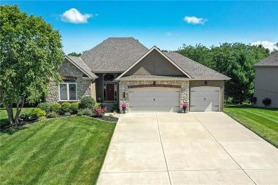 Smithville Single Family Home For Sale: 504 Indian Trail