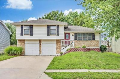 Olathe Single Family Home For Sale: 113 N Janell Drive