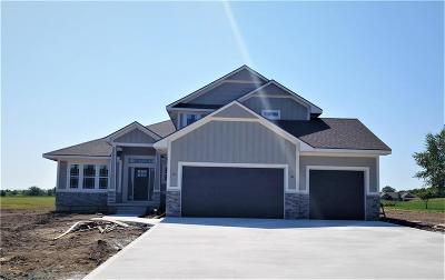 Peculiar Single Family Home For Sale: 10907 Timber Creek Drive
