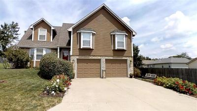 Blue Springs Single Family Home For Sale: 1144 SE Skyview Drive