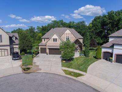 Overland Park Single Family Home For Sale: 9303 W 163rd Terrace