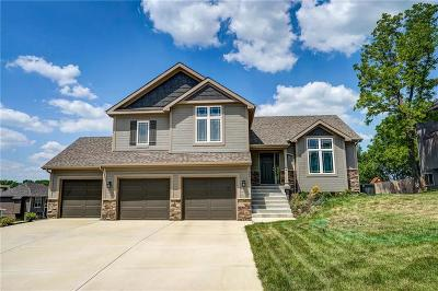 Smithville Single Family Home For Sale: 200 Carriage Court