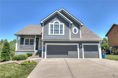 White Tail Pond Single Family Home For Sale: 716 Holt Drive