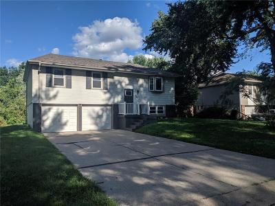 Grain Valley Single Family Home For Sale: 209 Concord Circle