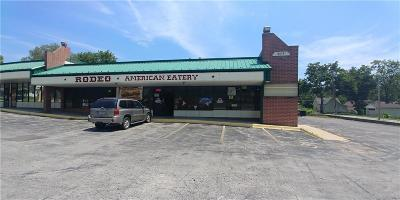 Independence Commercial For Sale: 815 N Noland Road