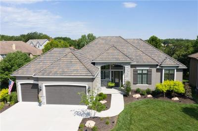 Johnson-KS County Single Family Home For Sale: 20214 W 89th Terrace