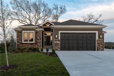 Lenexa Single Family Home For Sale: 8817 Freedom Street