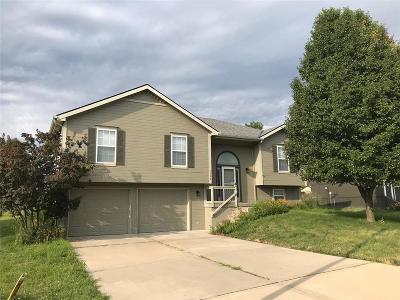 Kansas City Single Family Home Contingent: 8408 NE 109th Lane