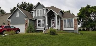 Raytown Single Family Home For Sale: 11804 E 87th Street