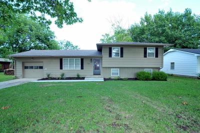 Ottawa Single Family Home For Sale: 1215 S Elm Street