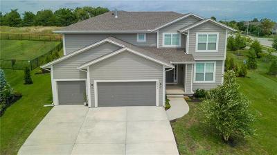 Olathe Single Family Home For Sale: 19956 W 107th Terrace
