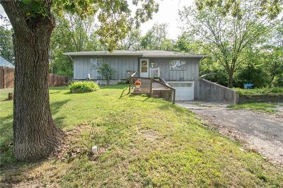 Excelsior Springs Single Family Home For Sale: 627 N Kent Street