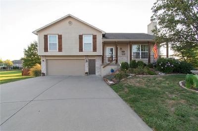 Kansas City Single Family Home For Sale: 10314 N Kensington Court