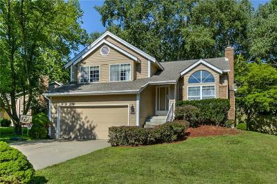 Blue Springs Single Family Home For Sale: 509 NW 41st Street