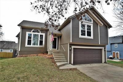 Shawnee Single Family Home For Sale: 4914 Payne Street