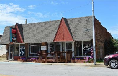 Warrensburg, Knob Noster Commercial For Sale: 106 E McPherson