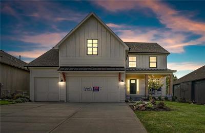 Johnson-KS County Single Family Home For Sale: 24329 W 92nd Street