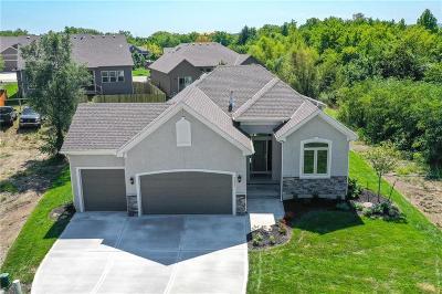 Lenexa Single Family Home For Sale: 24331 W 91st Terrace