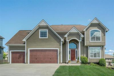 Lee's Summit MO Single Family Home For Sale: $415,000